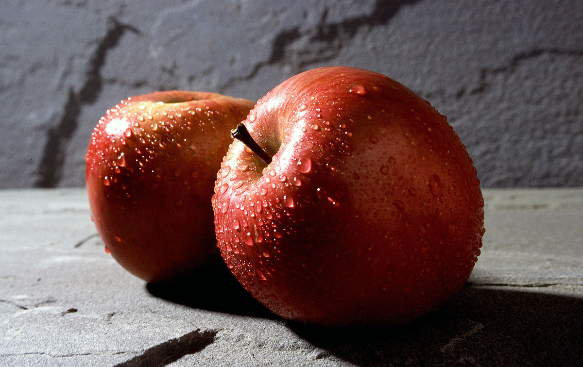 Pomme et vous - Engins @ Centre de loisirs - Engins | Engins | Auvergne-Rhône-Alpes | France