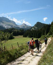 Randonnée de la Vercouline - Villard de Lans- La coupole @ La Coupole - Villard de Lans | Villard-de-Lans | Auvergne-Rhône-Alpes | France