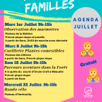 Animations Familles : le programme du mois de juillet