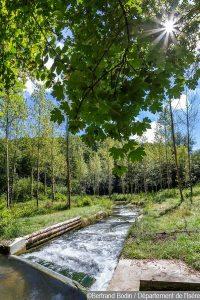Sortie nature : découverte de l'étang de Cote-Manin @ Pays Voironnais